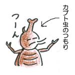 Suika04_2