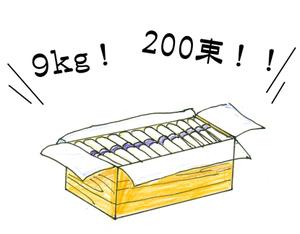 Soumen02